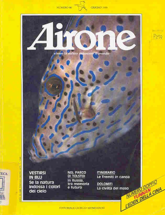 1988_06
