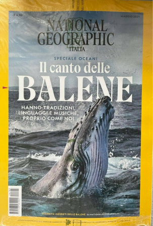 I balani delle balene